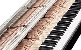 Yamaha Hybrid Digital Piano N2 33479 21 1 b65f8c6fe172ab42fb1bca460a97fce4