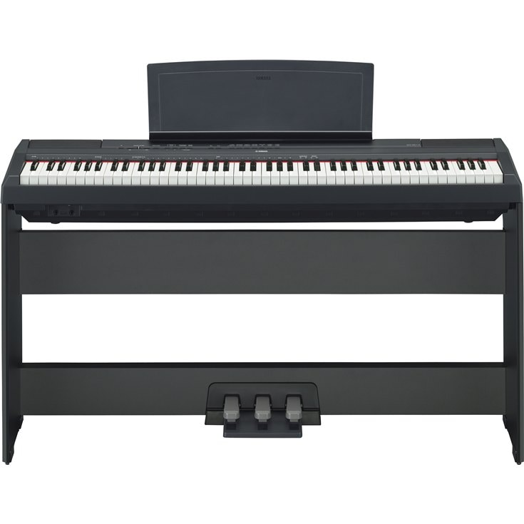 p 115 overview p series pianos musical instruments. Black Bedroom Furniture Sets. Home Design Ideas