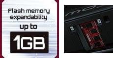 FLASH MEMORY EXPANDABILITY