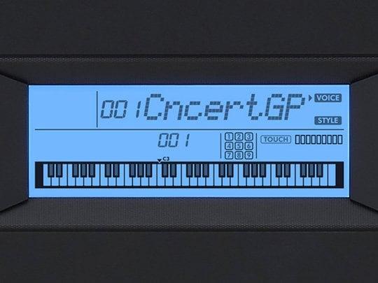 Backlit LCD display