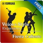 Fiesta Caliente (Yamaha Expansion Manager compatible data)